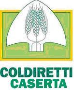 Coldiretti Caserta, logo
