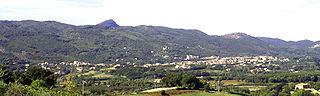 Alvignano