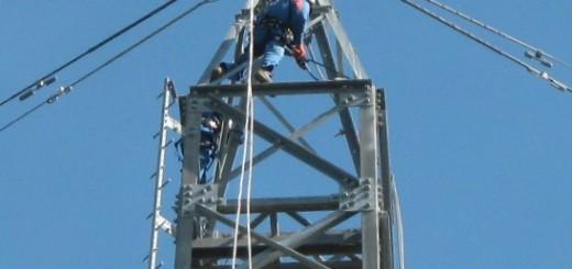 GRAZZANISE L'installazione della piattaforma per il nido delle cicogne bianche 170215