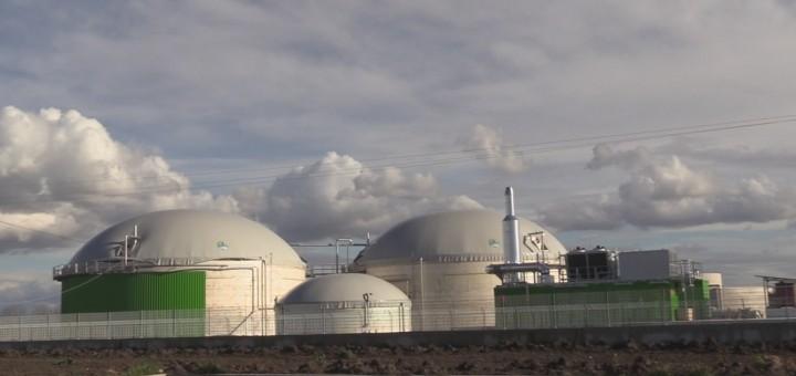 impianto biomasse_santa-maria-la-fossa_2016
