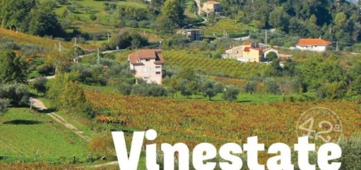 Vinestate2-702x336
