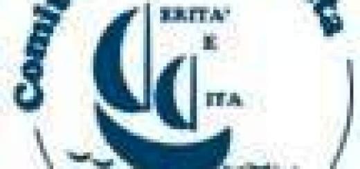 Comitato Verità e Vita, logo