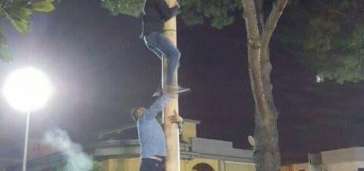 ALBERO DELLA CUCCAGNA, PALO DI SAPONE