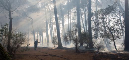 Incendio Vesuvio spento (17 di 21)-2