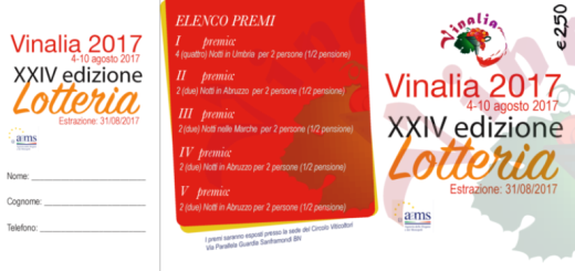lotteria vinalia 2017 (1)