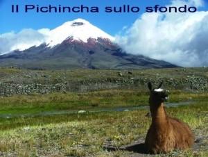 2 Il Pichincha