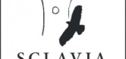 logo sclavia (2)