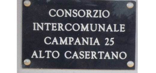 CONSORZIO CAMPANIA 25 INSEGNA